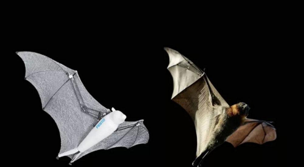 机器人蝙蝠侠和蜘蛛侠